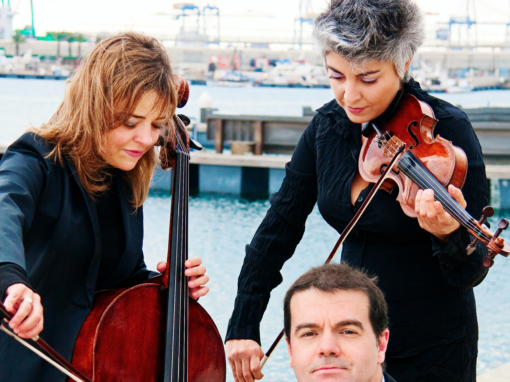 Brouwer Trio</br></br><center> <h6>Booking in Spain</h6></center>